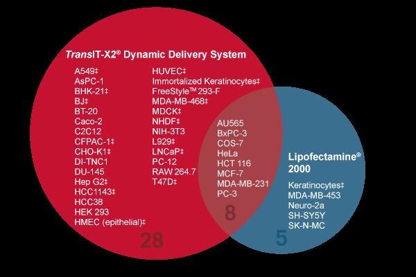 Transit X2 Transfection Reagent